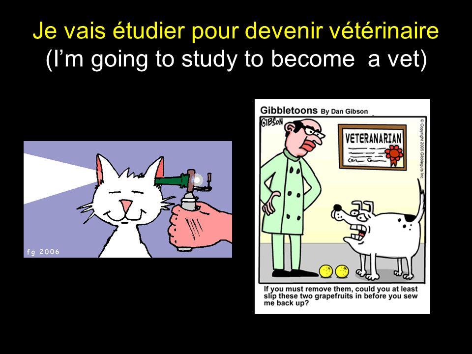 Je vais étudier pour devenir vétérinaire (Im going to study to become a vet)