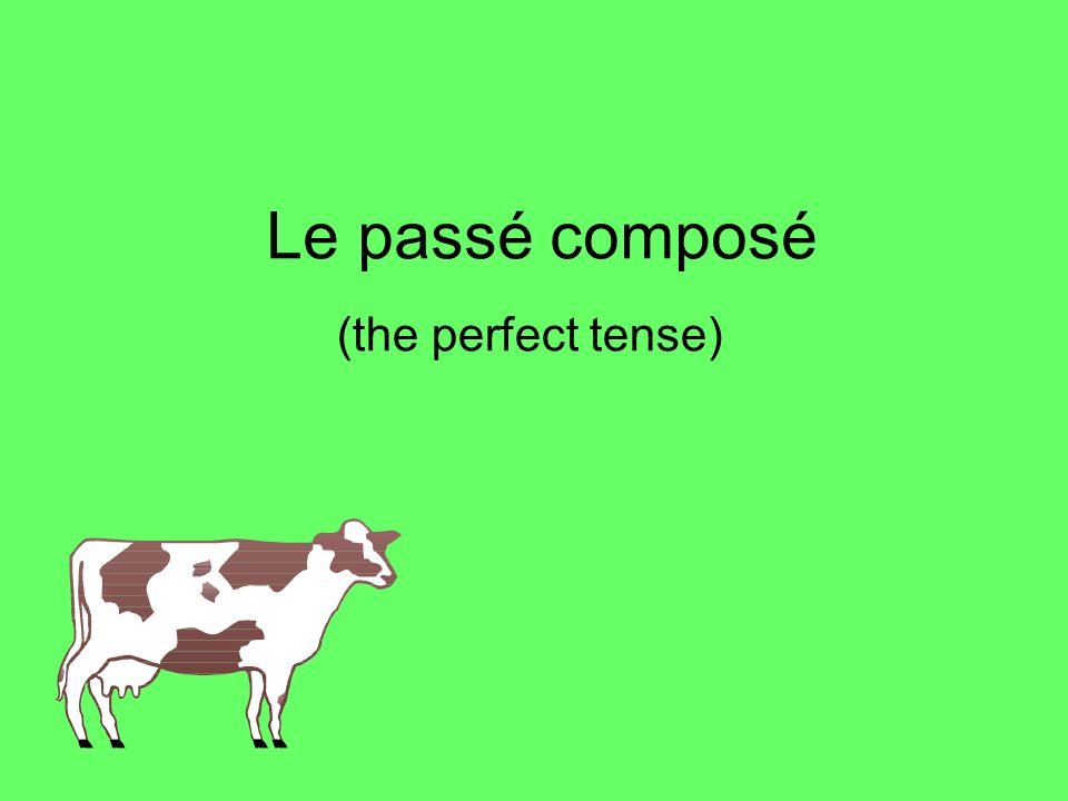 The perfect tense – Le passé composé In French you use the perfect tense (le passé composé) to say what you have done in the past.