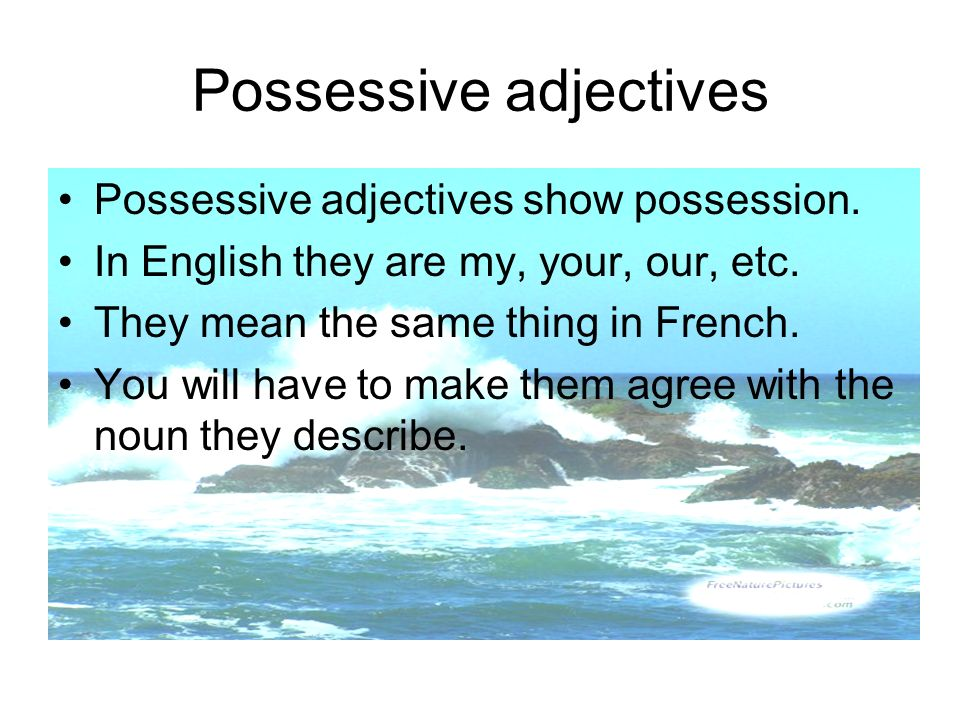 Possessive adjectives Possessive adjectives show possession. In English they are my, your, our, etc. They mean the same thing in French. You will have
