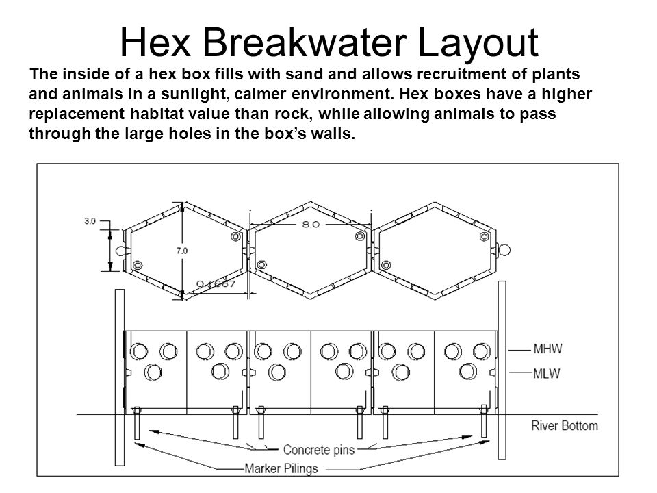 Hex Breakwater Layout The inside of a hex box fills with sand and allows recruitment of plants and animals in a sunlight, calmer environment. Hex boxe