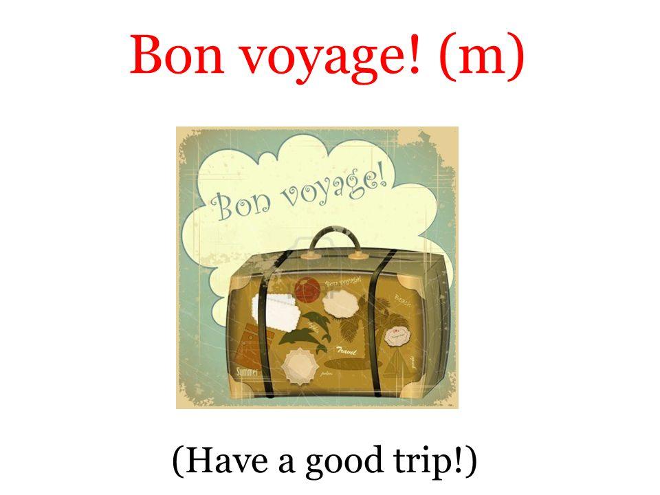 (Have a good trip!) Bon voyage! (m)