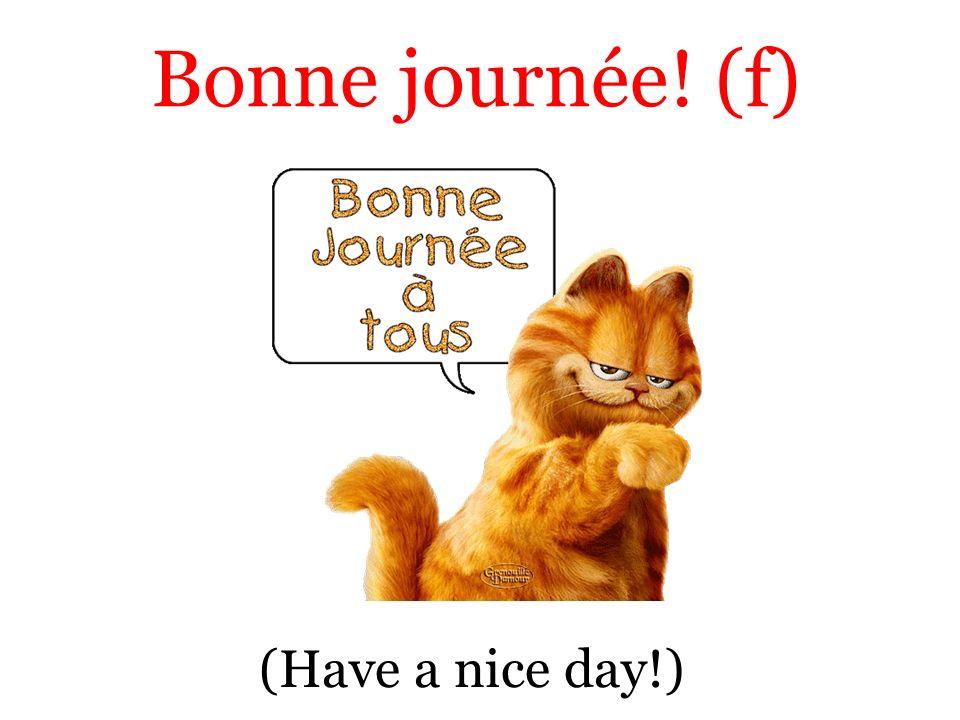 (Have a nice day!) Bonne journée! (f)