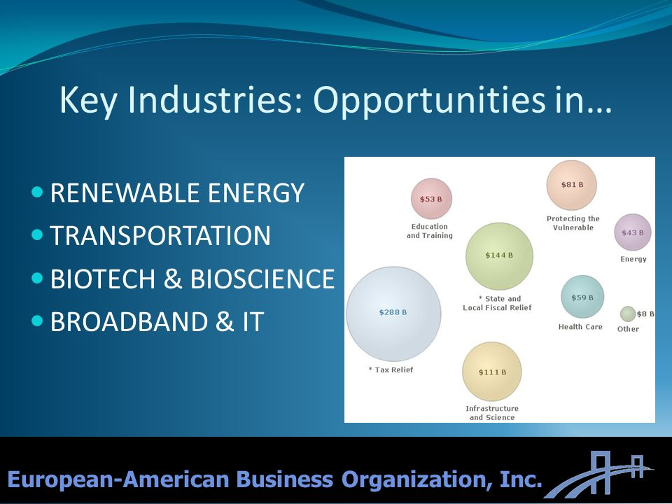 Key Industries: Opportunities in… RENEWABLE ENERGY TRANSPORTATION BIOTECH & BIOSCIENCE BROADBAND & IT 4 European-American Business Organization, Inc.