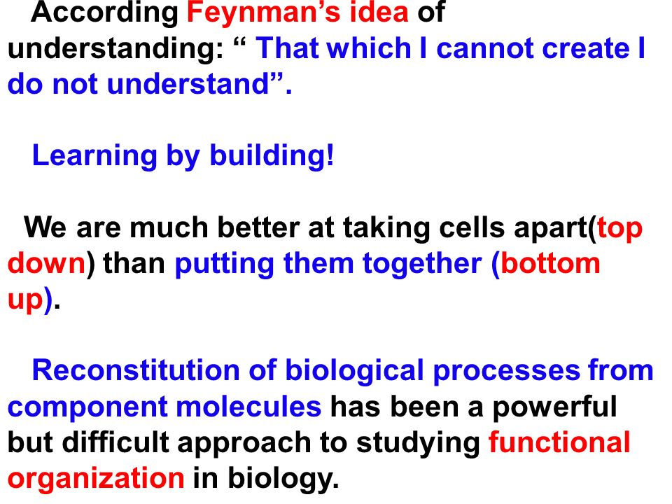 According Feynmans idea of understanding: That which I cannot create I do not understand. Learning by building! We are much better at taking cells apa