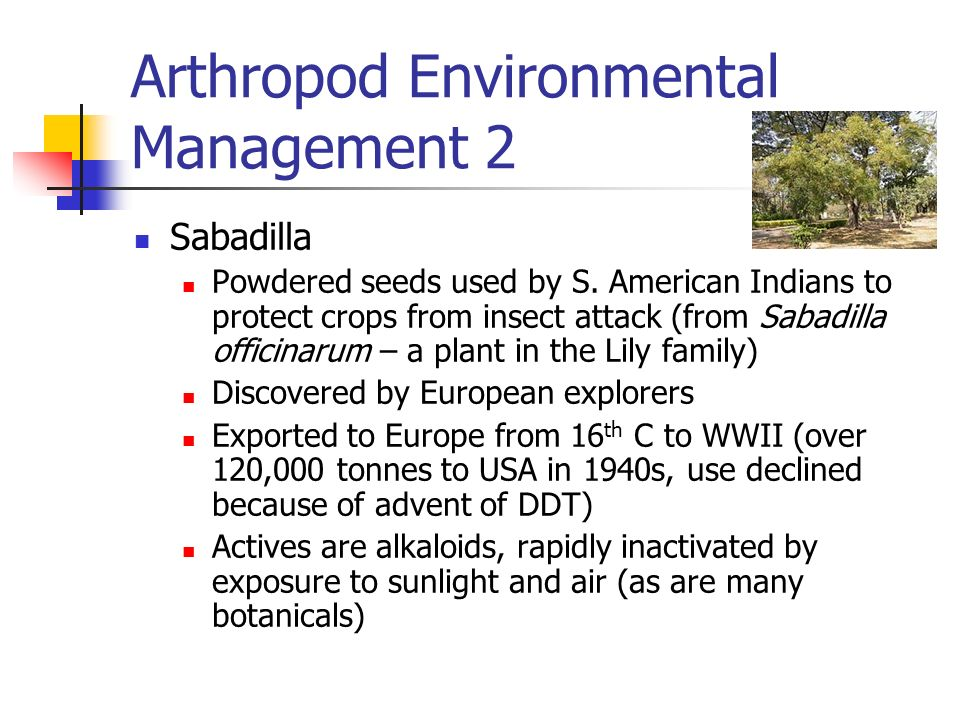 Arthropod Environmental Management 2 Sabadilla Powdered seeds used by S. American Indians to protect crops from insect attack (from Sabadilla officina
