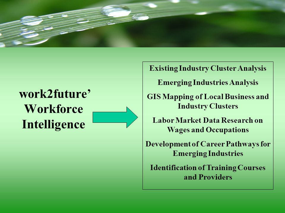 Existing Industry Cluster Analysis Emerging Industries Analysis GIS Mapping of Local Business and Industry Clusters Labor Market Data Research on Wage