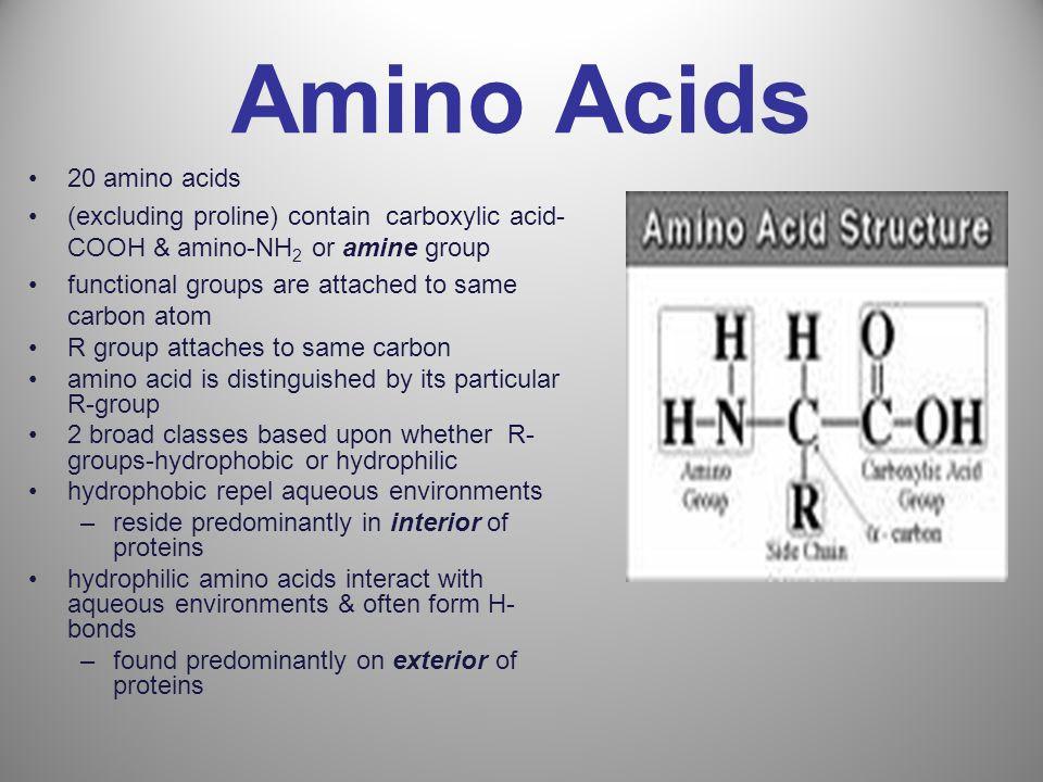 Amino Acids 20 amino acids (excluding proline) contain carboxylic acid- COOH & amino-NH 2 or amine group functional groups are attached to same carbon