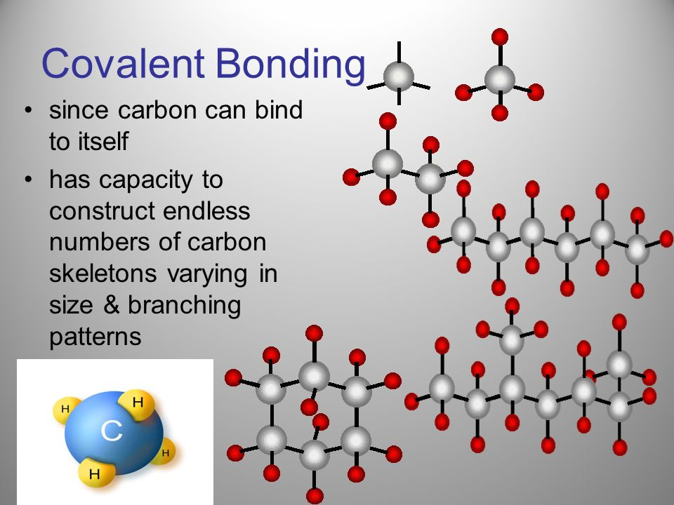 Covalent Bonding since carbon can bind to itself has capacity to construct endless numbers of carbon skeletons varying in size & branching patterns
