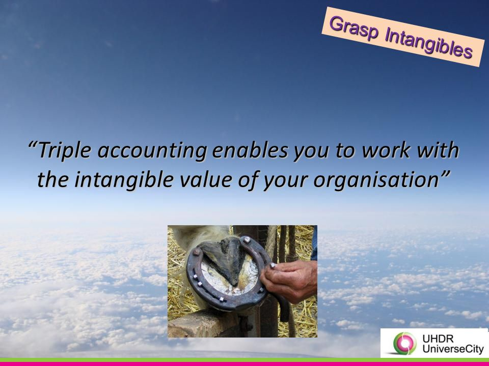 Triple accounting enables you to work with the intangible value of your organisation Grasp Intangibles
