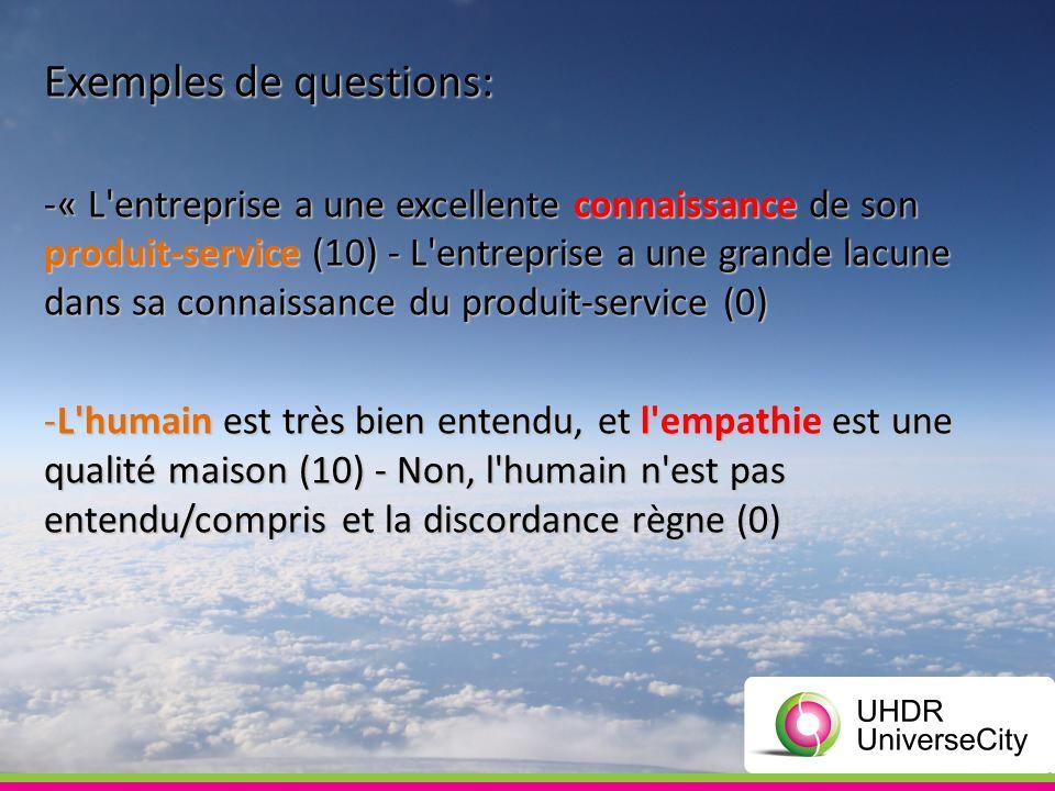 Exemples de questions: -« L'entreprise a une excellente connaissance de son produit-service (10) - L'entreprise a une grande lacune dans sa connaissan