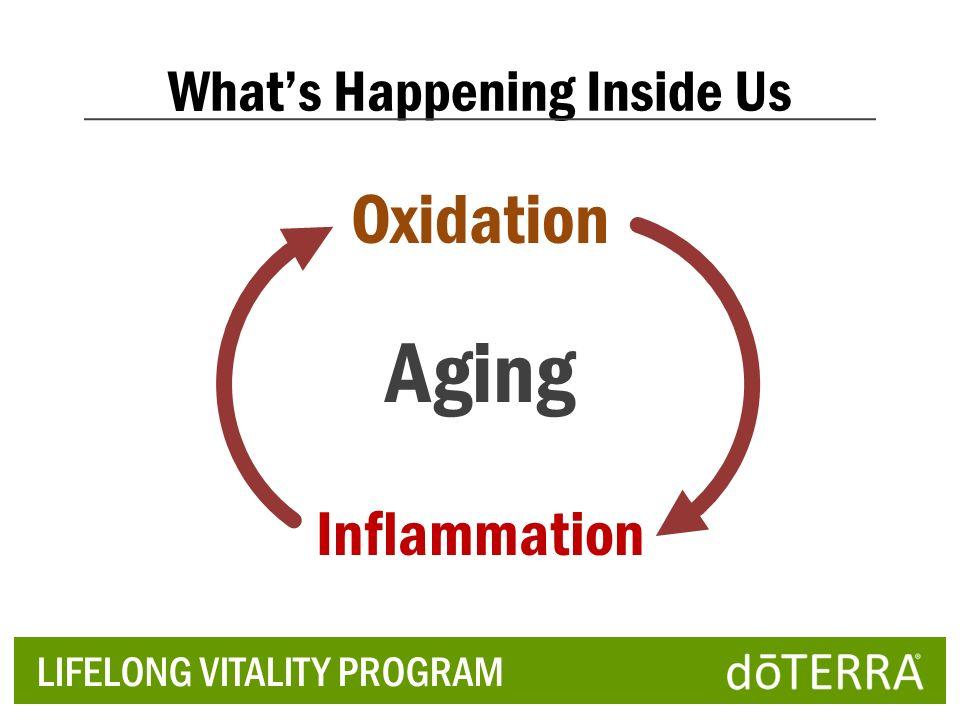 Aging Oxidation Inflammation LIFELONG VITALITY PROGRAM Whats Happening Inside Us