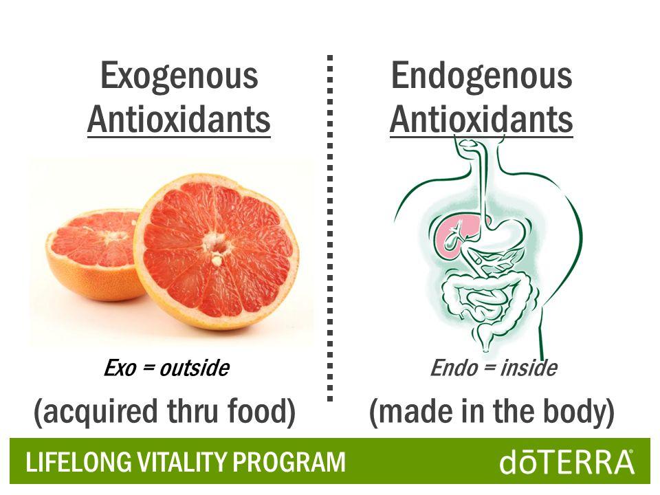 LIFELONG VITALITY PROGRAM Exogenous Antioxidants Endogenous Antioxidants Exo = outside (acquired thru food) Endo = inside (made in the body)