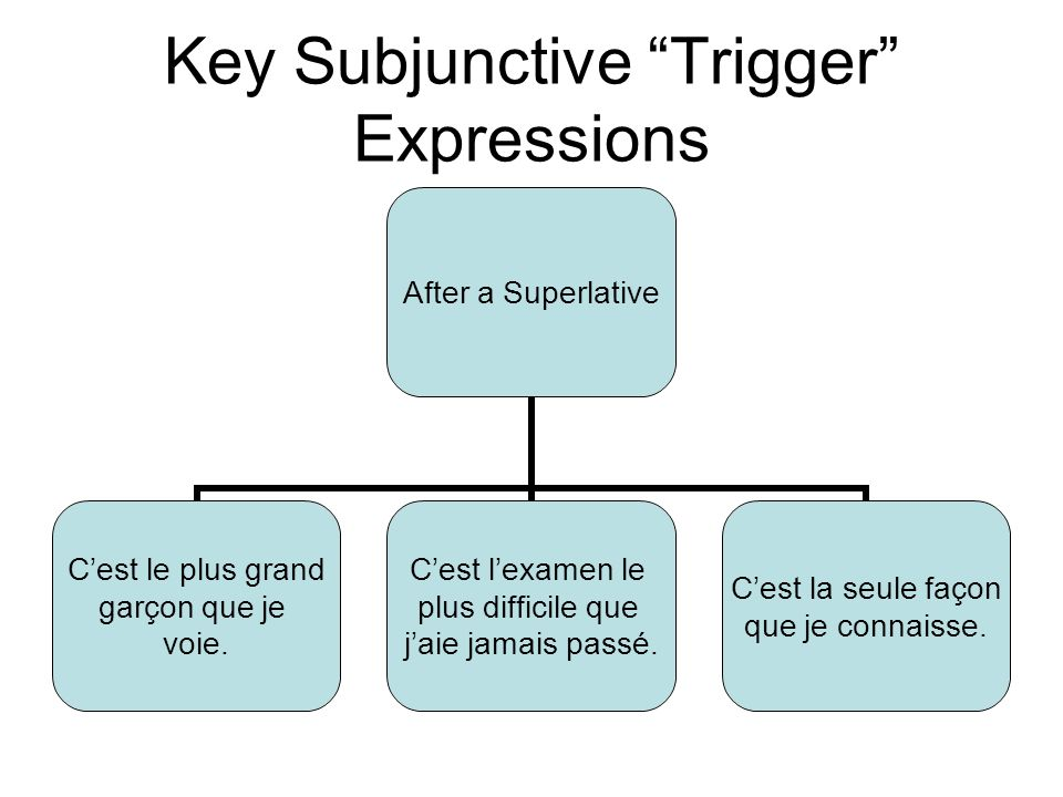 Key Subjunctive Trigger Expressions After a Superlative Cest le plus grand garçon que je voie.