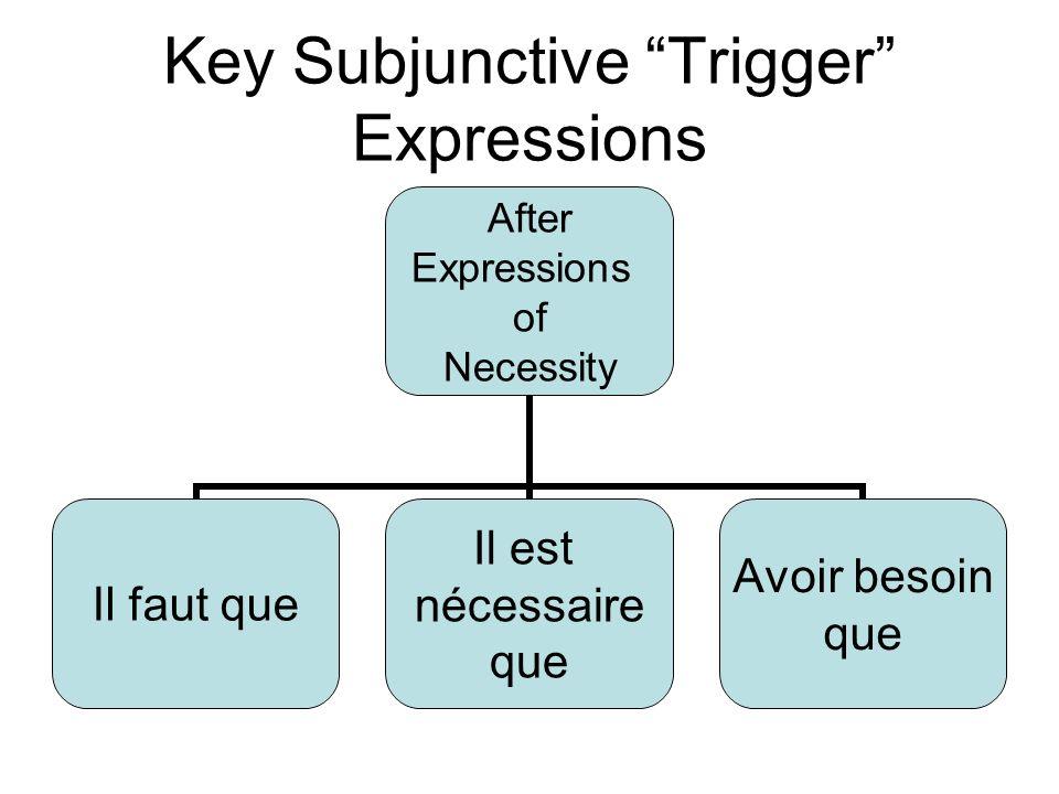 Key Subjunctive Trigger Expressions After Expressions of Necessity Il faut que Il est nécessaire que Avoir besoin que