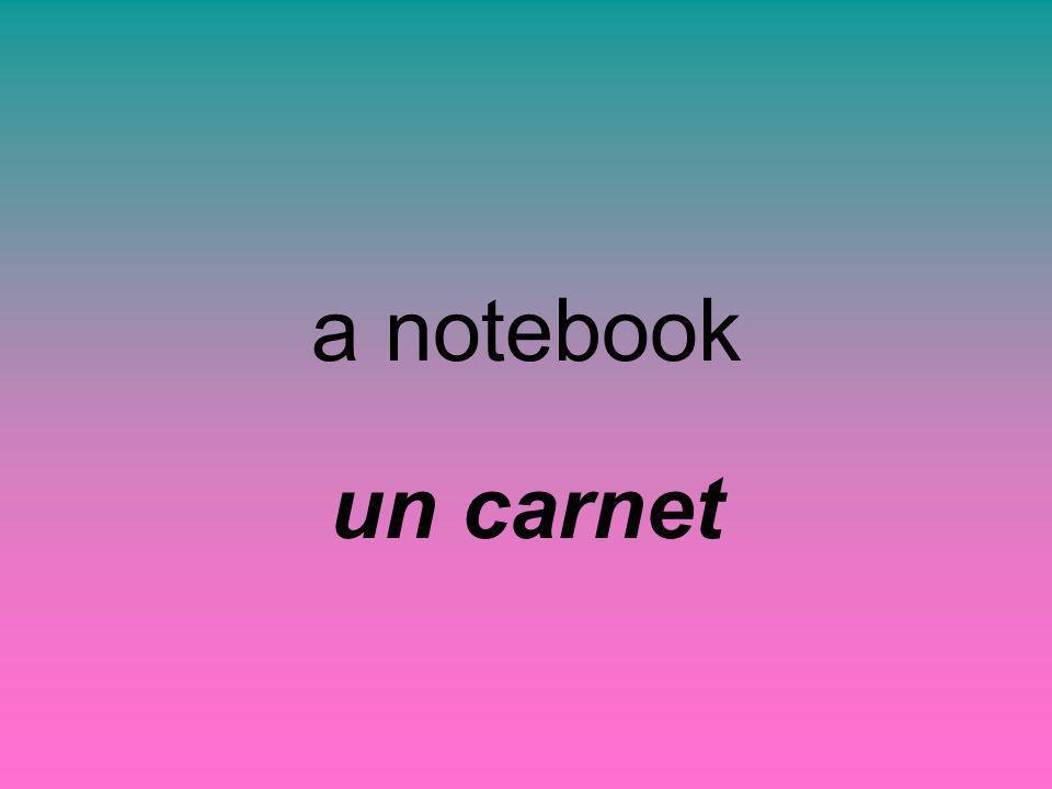 a notebook un carnet