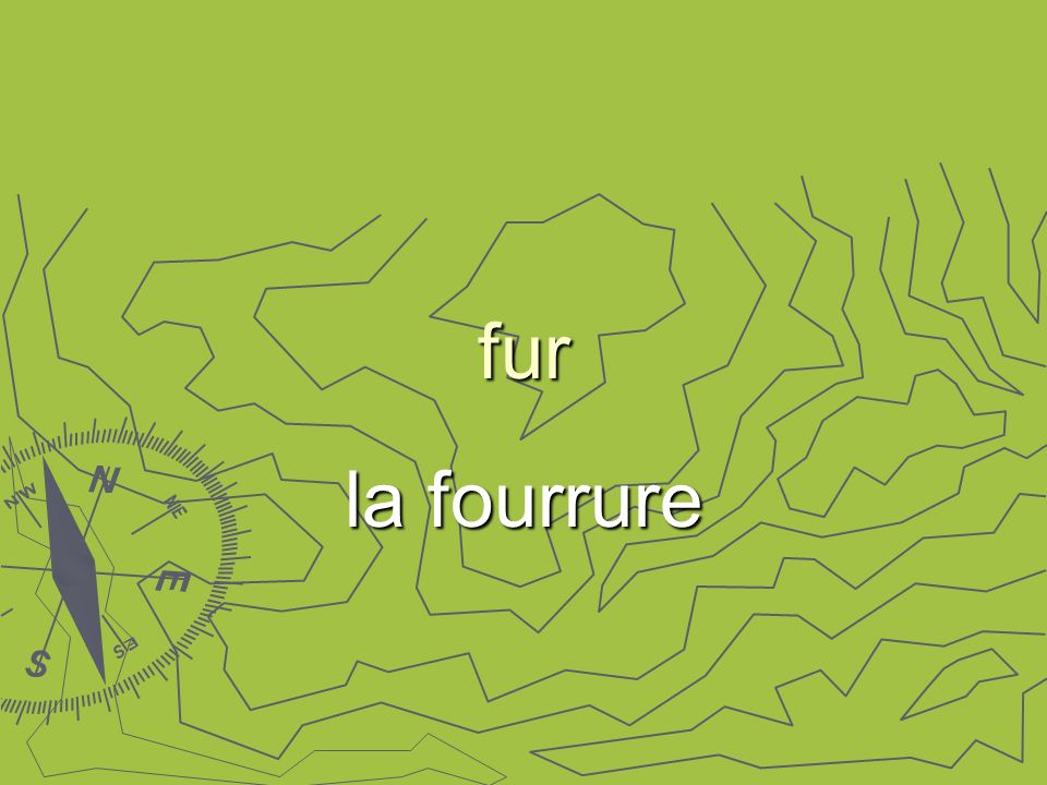 fur la fourrure