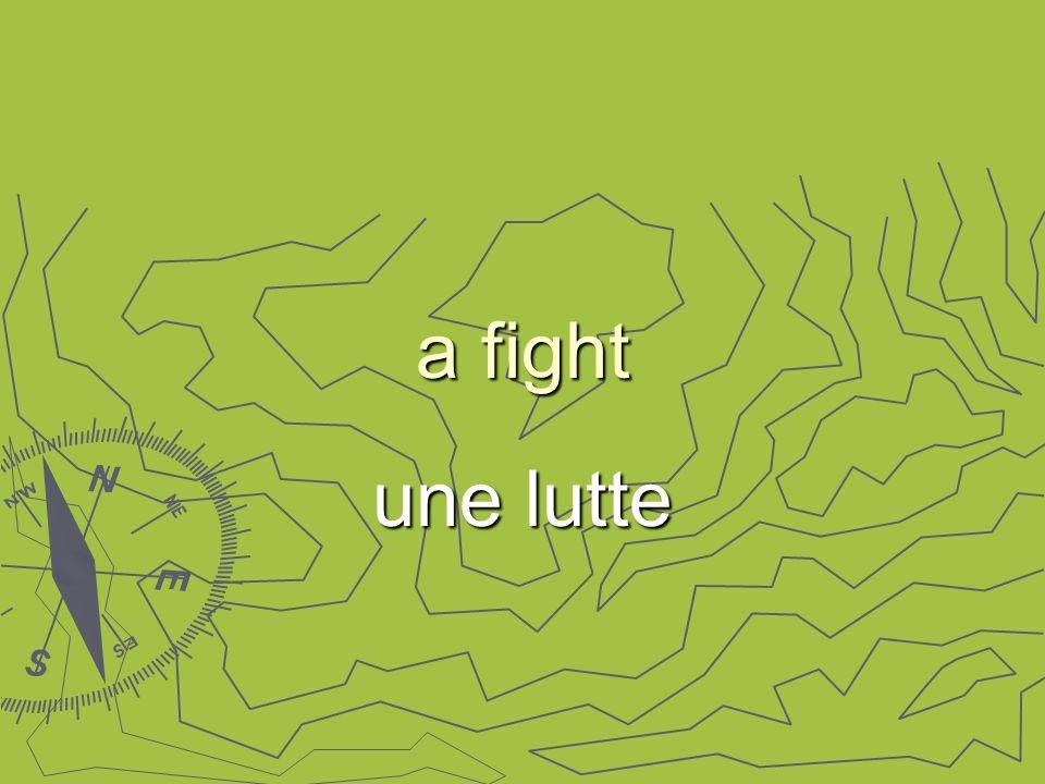 a fight une lutte