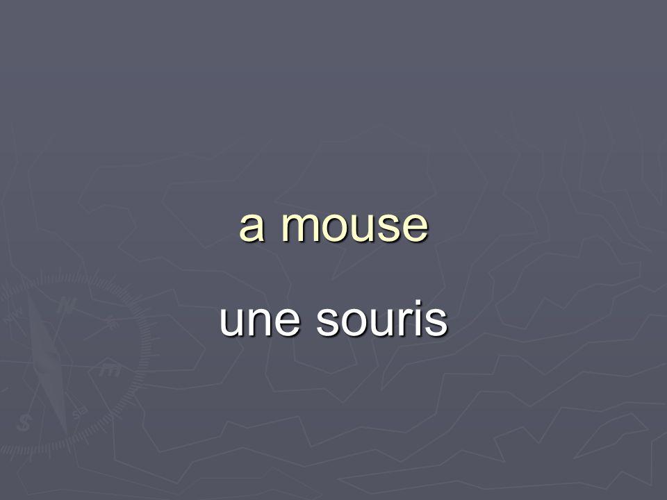 a mouse une souris