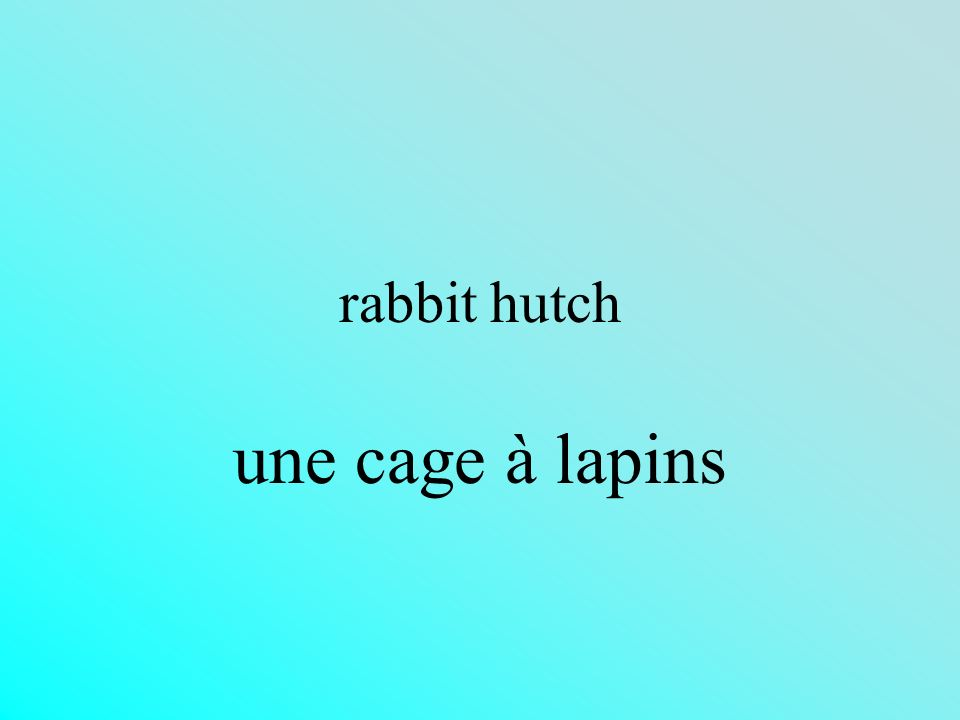rabbit hutch une cage à lapins