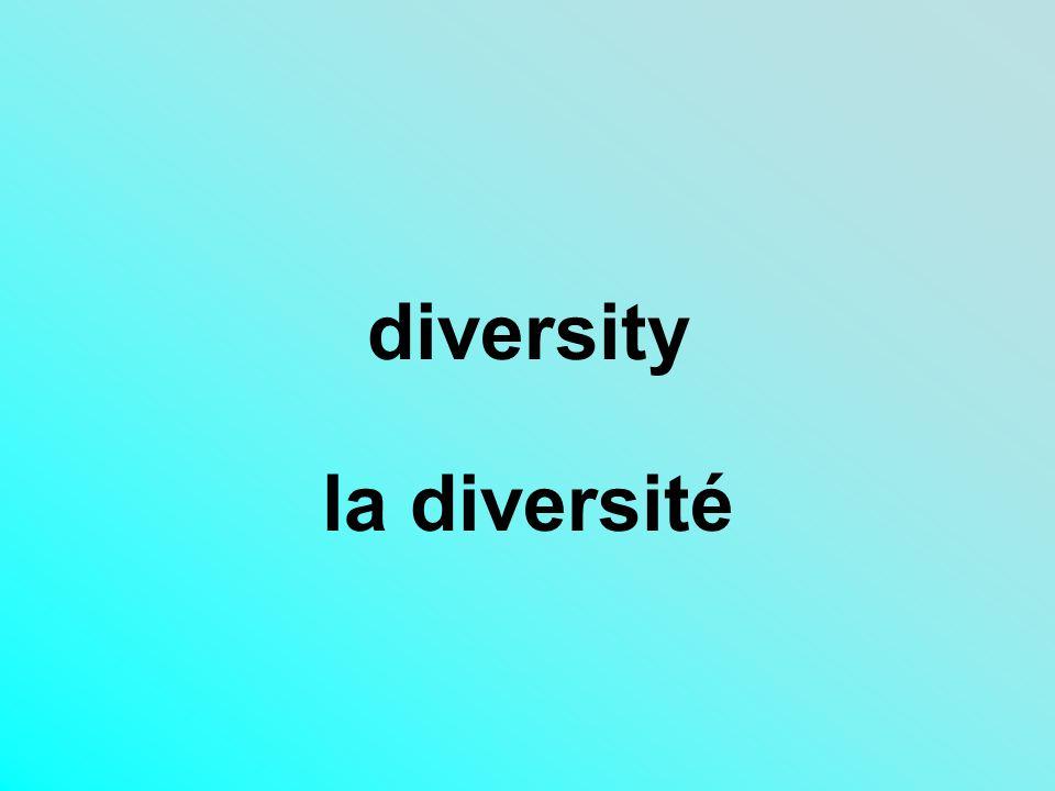 diversity la diversité