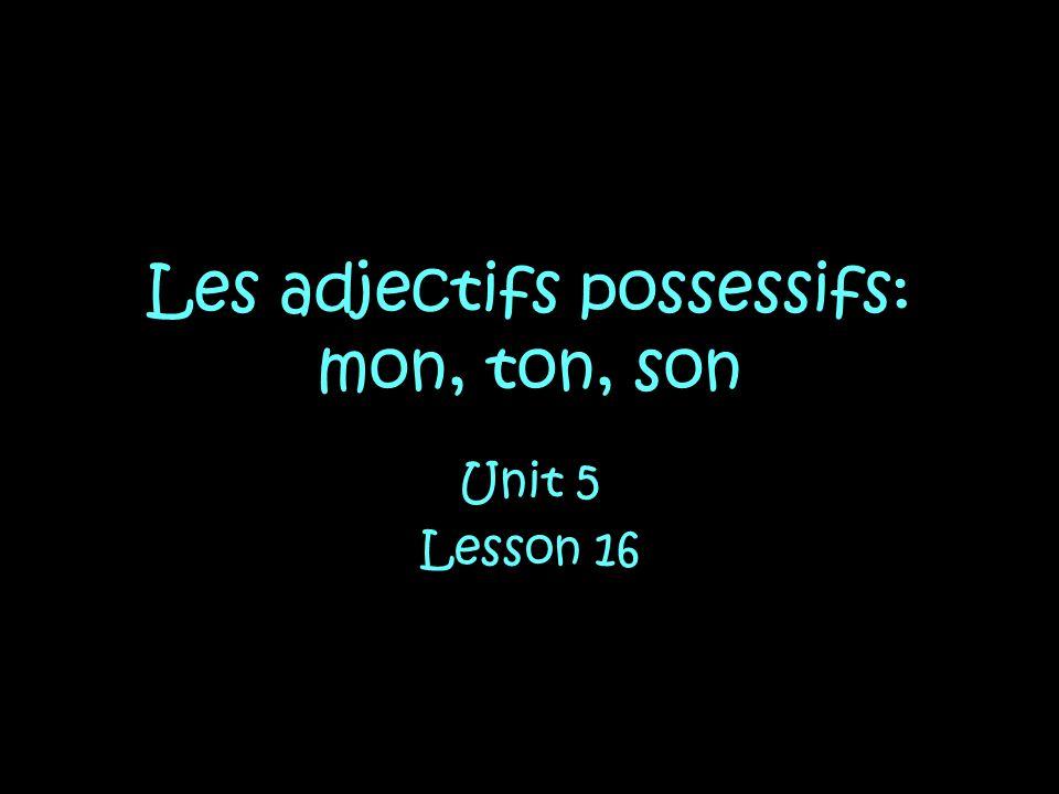 Les adjectifs possessifs: mon, ton, son Unit 5 Lesson 16