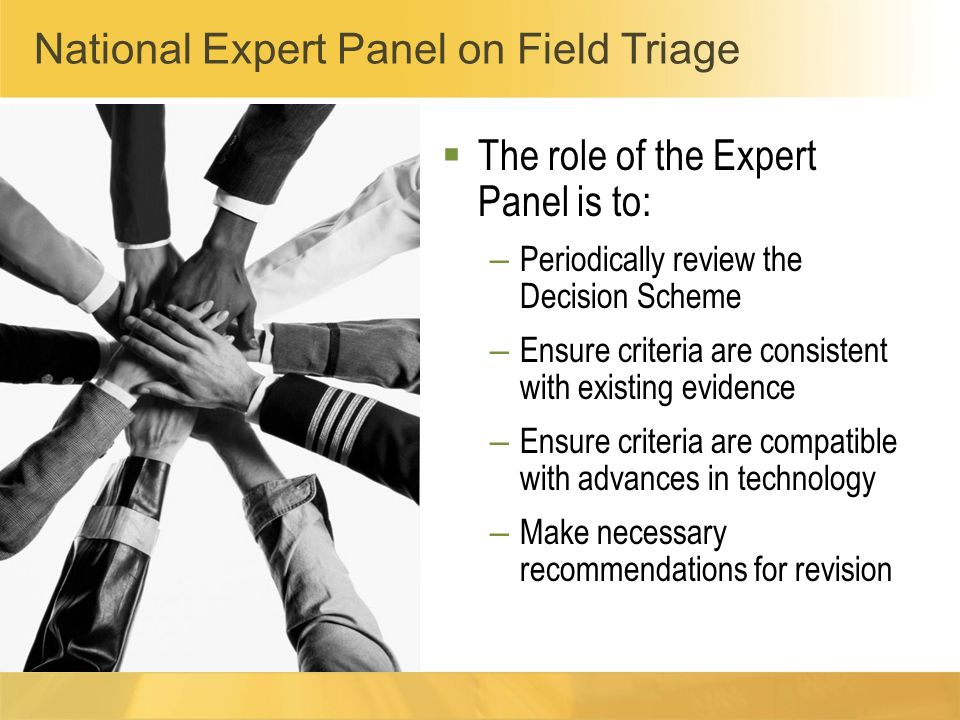The role of the Expert Panel is to: – Periodically review the Decision Scheme – Ensure criteria are consistent with existing evidence – Ensure criteri