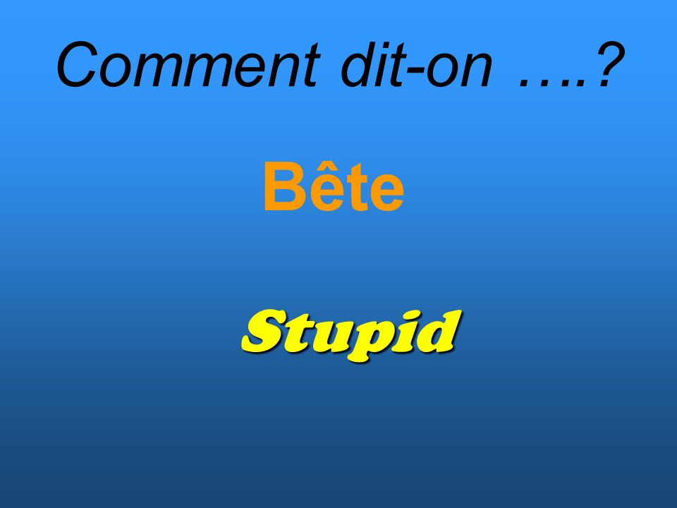 Comment dit-on …. Bête Stupid
