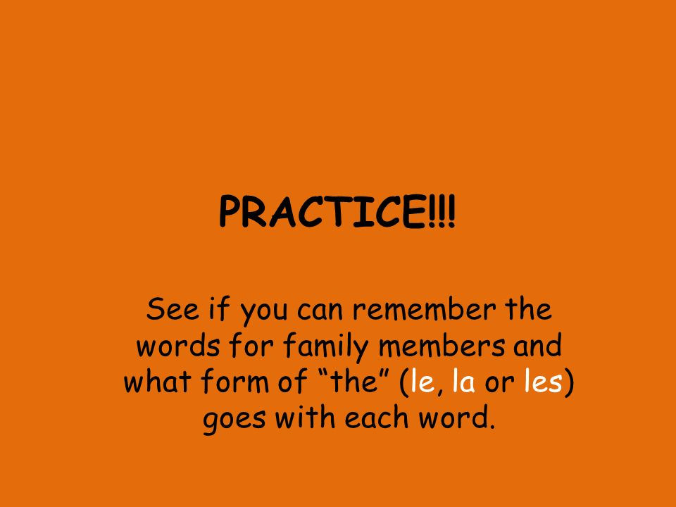 PRACTICE!!! See if you can remember the words for family members and what form of the (le, la or les) goes with each word.