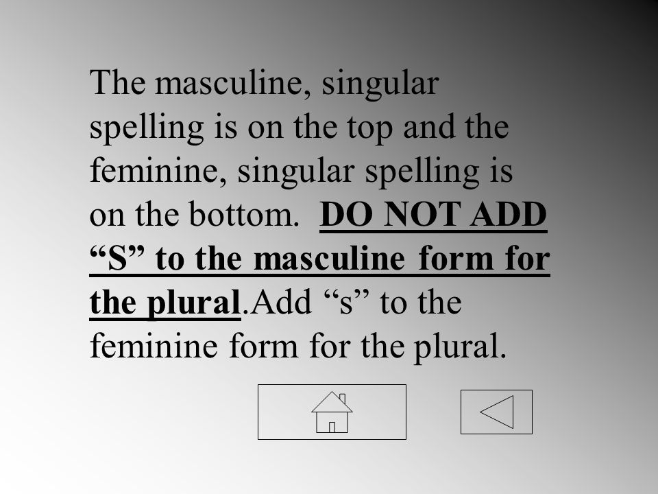The masculine, singular spelling is on the top and the feminine, singular spelling is on the bottom. DO NOT ADD S to the masculine form for the plural
