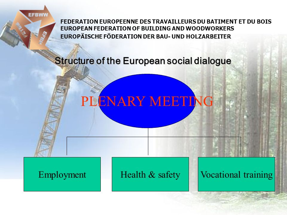 FEDERATION EUROPEENNE DES TRAVAILLEURS DU BATIMENT ET DU BOIS EUROPEAN FEDERATION OF BUILDING AND WOODWORKERS EUROPÄISCHE FÖDERATION DER BAU- UND HOLZARBEITER Structure of the European social dialogue PLENARY MEETING EmploymentVocational trainingHealth & safety