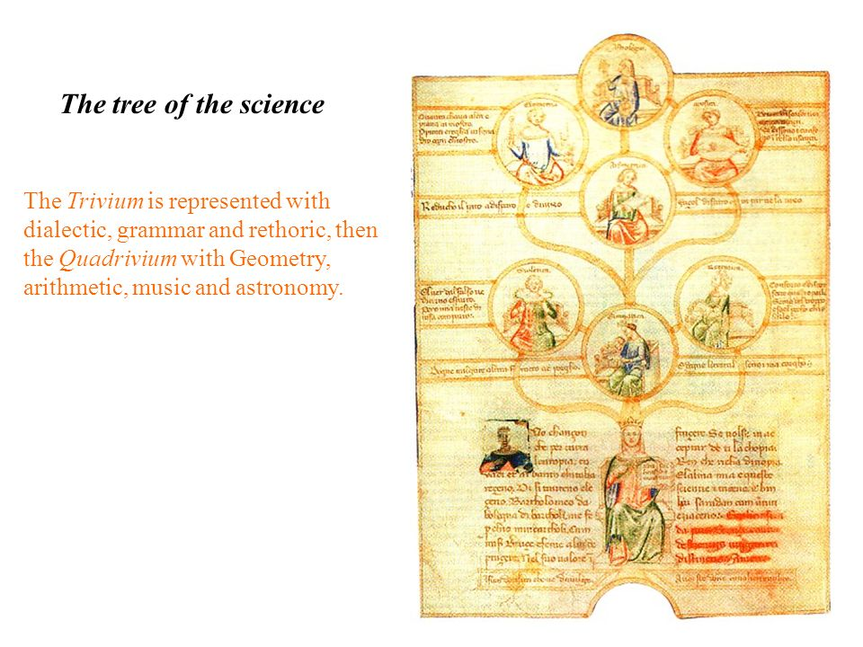 The tree of the science The Trivium is represented with dialectic, grammar and rethoric, then the Quadrivium with Geometry, arithmetic, music and astr