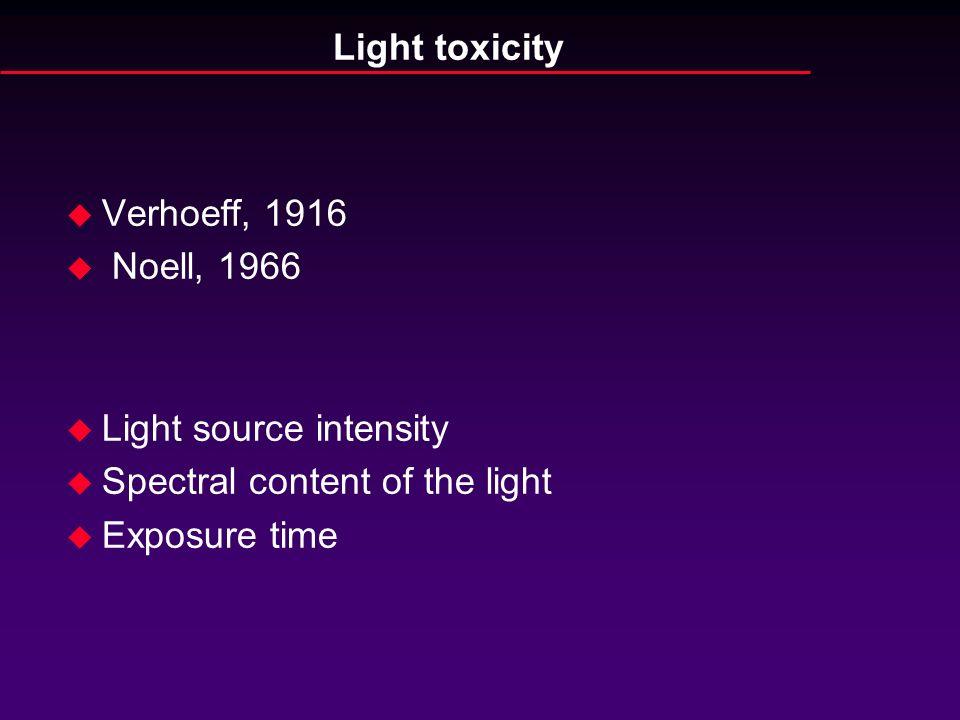 Light toxicity u Verhoeff, 1916 u Noell, 1966 u Light source intensity u Spectral content of the light u Exposure time