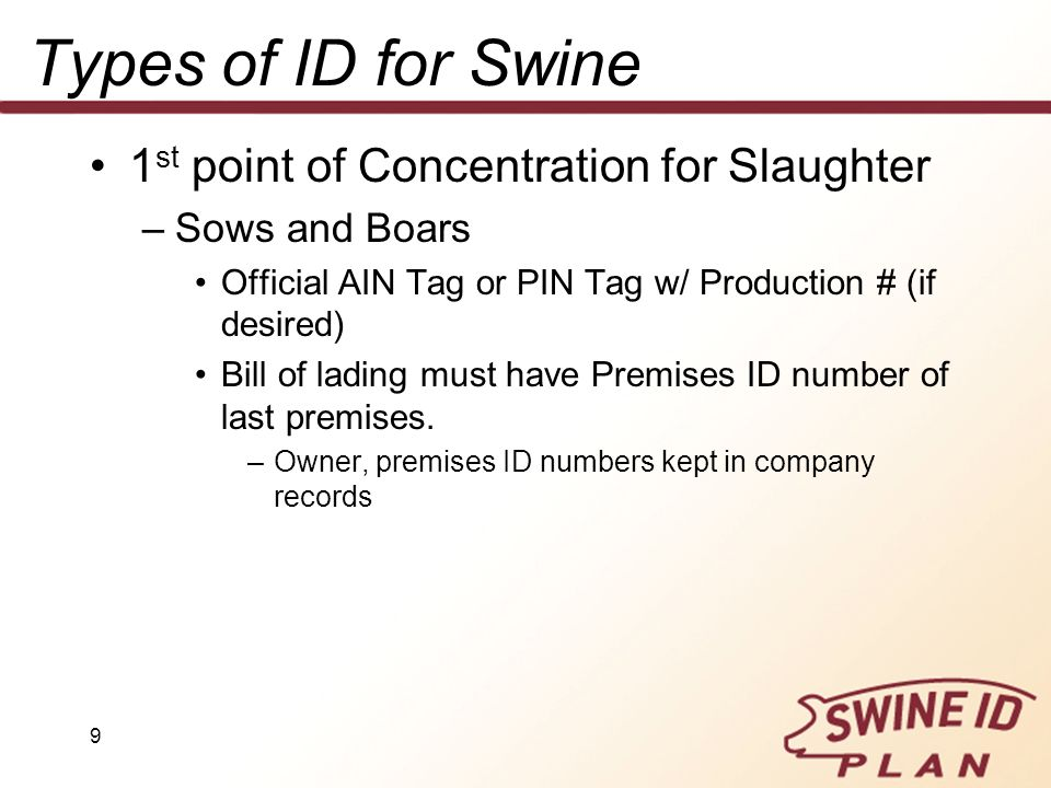 9 Types of ID for Swine 1 st point of Concentration for Slaughter –Sows and Boars Official AIN Tag or PIN Tag w/ Production # (if desired) Bill of lad