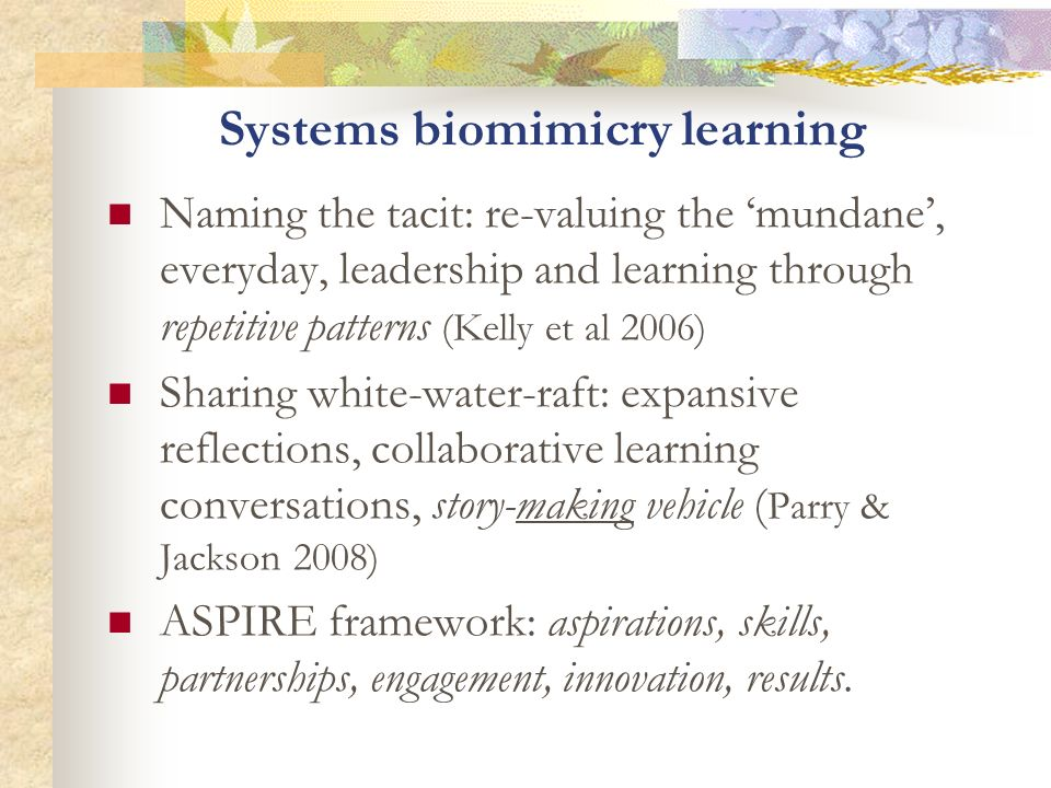 Systems biomimicry learning Naming the tacit: re-valuing the mundane, everyday, leadership and learning through repetitive patterns (Kelly et al 2006)