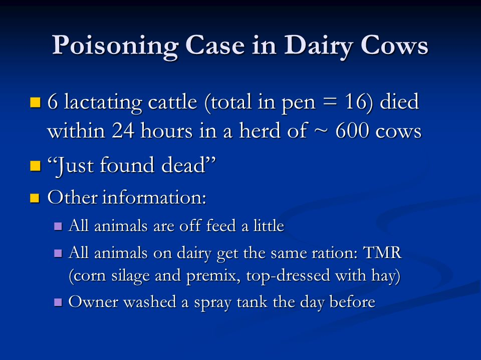 Poisoning Case in Dairy Cows 6 lactating cattle (total in pen = 16) died within 24 hours in a herd of ~ 600 cows 6 lactating cattle (total in pen = 16