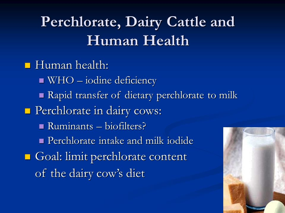 Perchlorate, Dairy Cattle and Human Health Human health: Human health: WHO – iodine deficiency WHO – iodine deficiency Rapid transfer of dietary perch