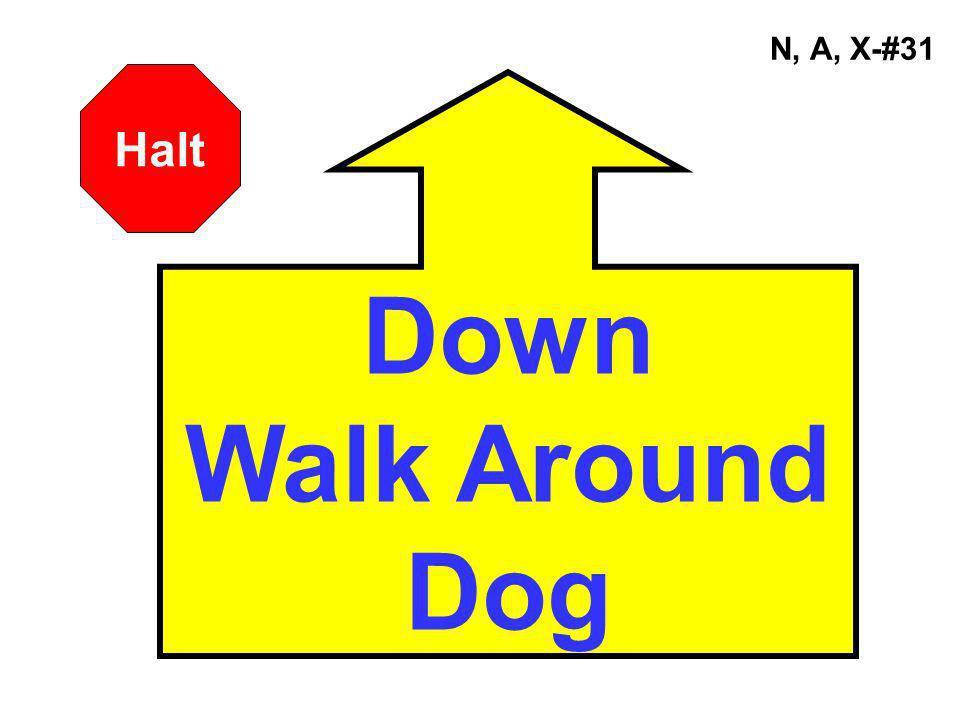 N, A, X-#31 Down Walk Around Dog Halt