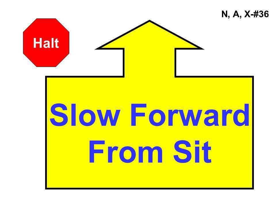 N, A, X-#36 Slow Forward From Sit Halt