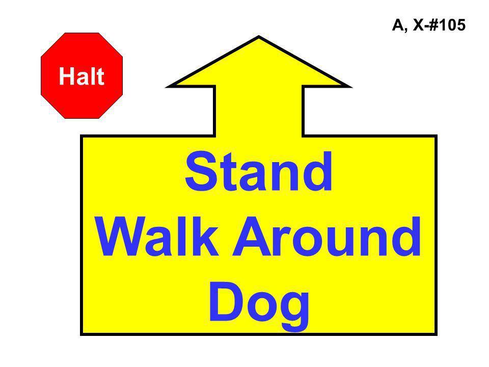 A, X-#105 Stand Walk Around Dog Halt
