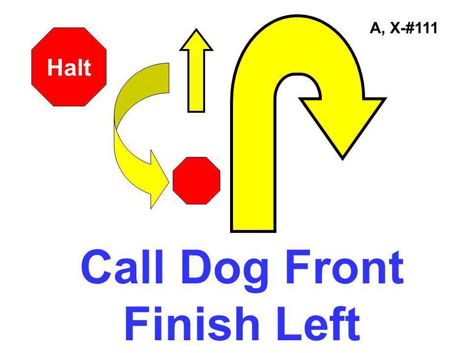 A, X-#111 Halt Call Dog Front Finish Left