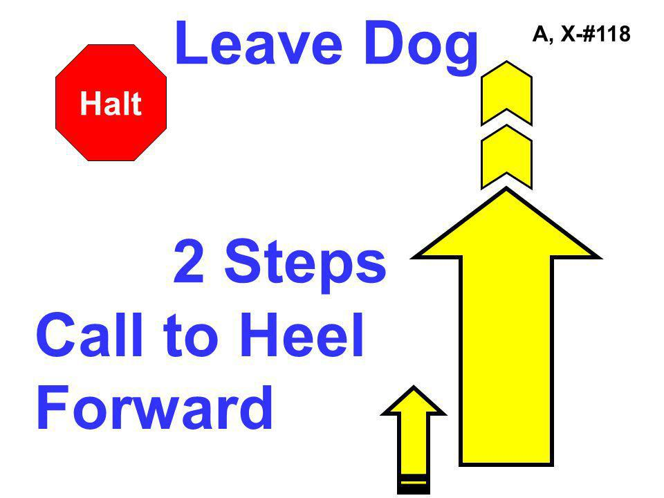 A, X-#118 Call to Heel Forward Leave Dog 2 Steps