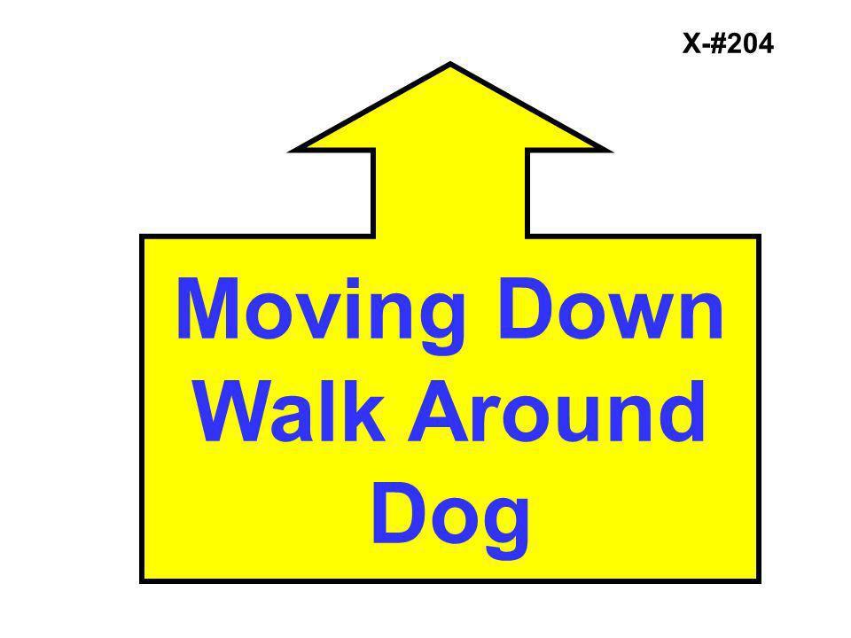 X-#204 Moving Down Walk Around Dog