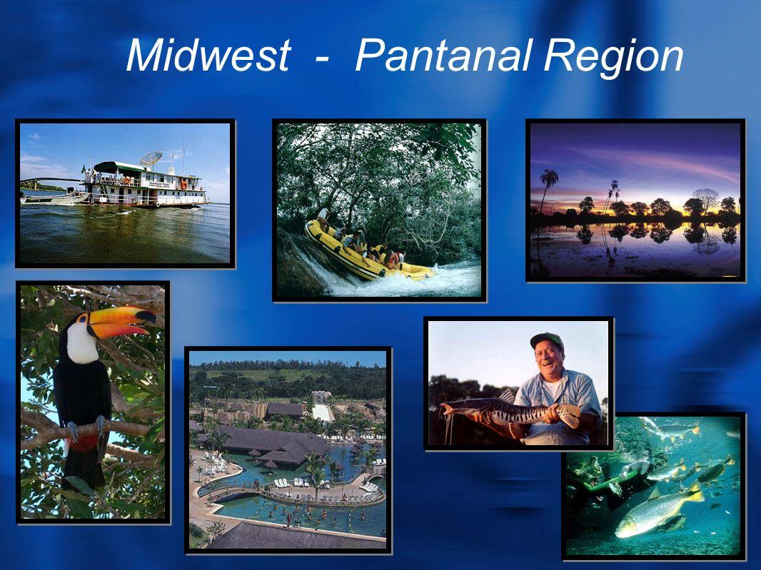 Midwest - Pantanal Region