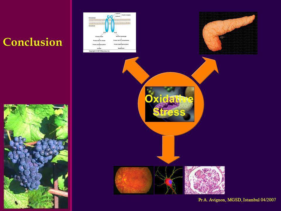 Pr A. Avignon, MGSD, Istambul 04/2007 Conclusion Oxidative Stress Oxidative Stress