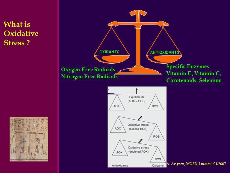 Pr A. Avignon, MGSD, Istambul 04/2007 What is Oxidative Stress ? ANTIOXIDANTS OXIDANTS Oxygen Free Radicals Nitrogen Free Radicals Specific Enzymes Vi