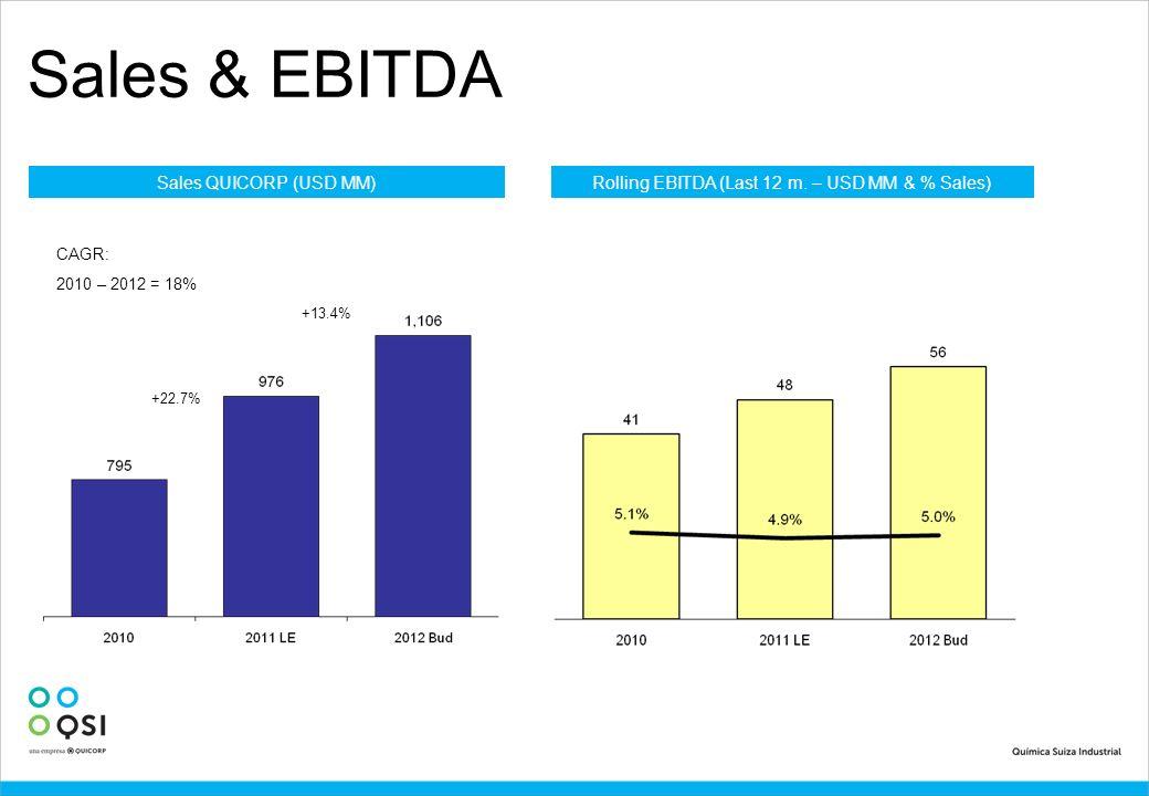 Sales & EBITDA Sales QUICORP (USD MM) +22.7% Rolling EBITDA (Last 12 m. – USD MM & % Sales) CAGR: 2010 – 2012 = 18% +13.4%