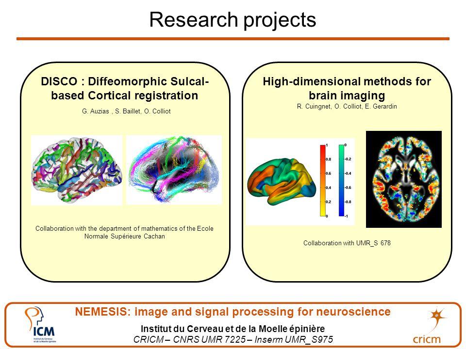NEMESIS: image and signal processing for neuroscience Institut du Cerveau et de la Moelle épinière CRICM – CNRS UMR 7225 – Inserm UMR_S975 Research projects High-dimensional methods for brain imaging R.