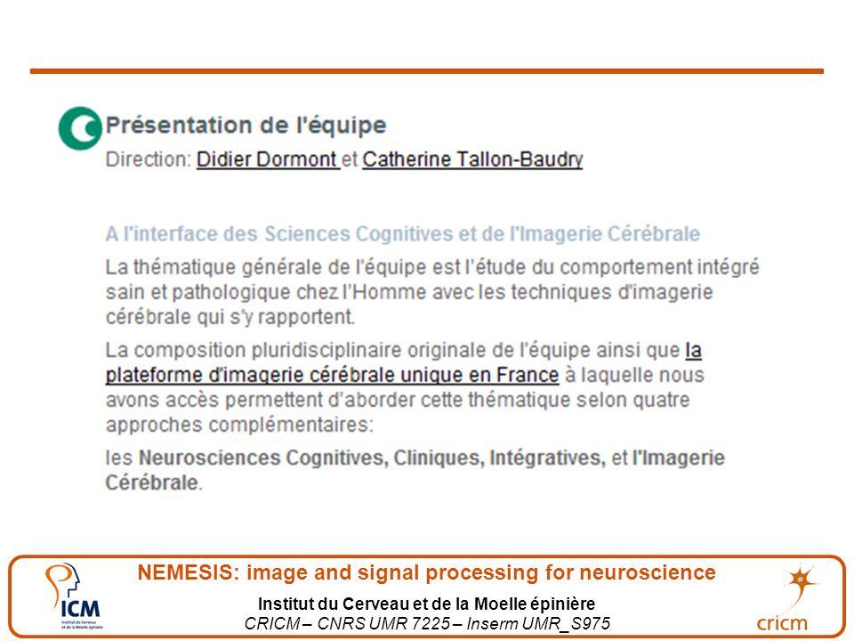 NEMESIS: image and signal processing for neuroscience Institut du Cerveau et de la Moelle épinière CRICM – CNRS UMR 7225 – Inserm UMR_S975