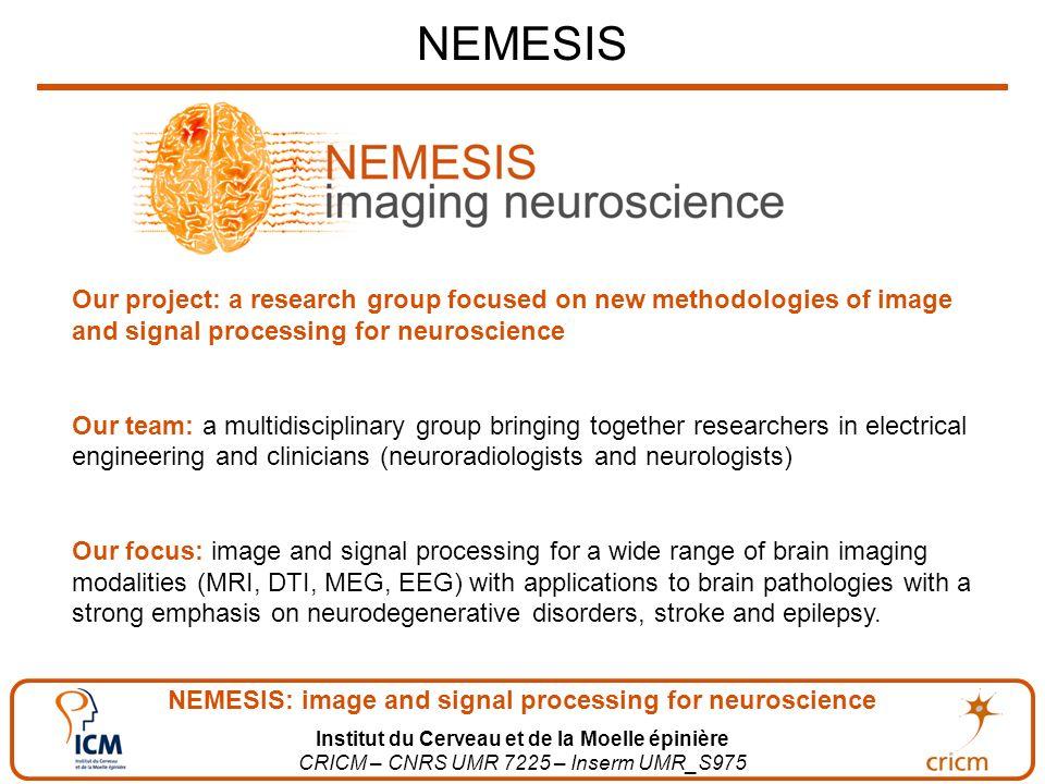 NEMESIS: image and signal processing for neuroscience Institut du Cerveau et de la Moelle épinière CRICM – CNRS UMR 7225 – Inserm UMR_S975 NEMESIS Our