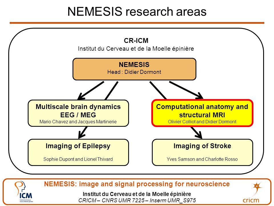 NEMESIS: image and signal processing for neuroscience Institut du Cerveau et de la Moelle épinière CRICM – CNRS UMR 7225 – Inserm UMR_S975 NEMESIS res